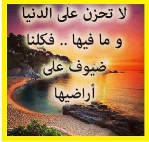 1476108_1417579808475445_1777236991_n