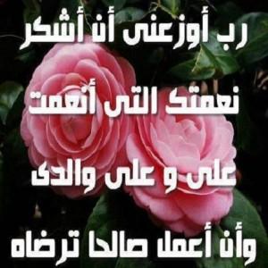 600844_109976519207060_1037023853_n